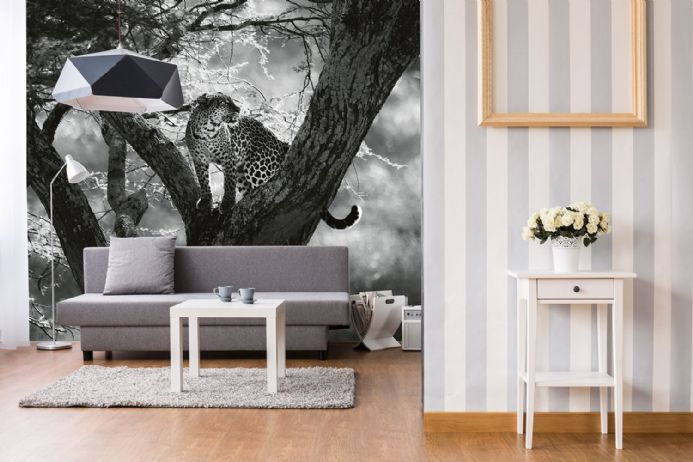 Photo wallpapers Leopard On Tree | Shop online